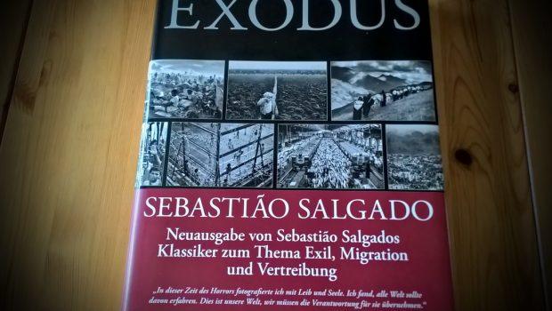 exodus3